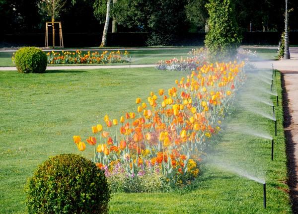 Sistemas de riego en jardinería: los más eficientes
